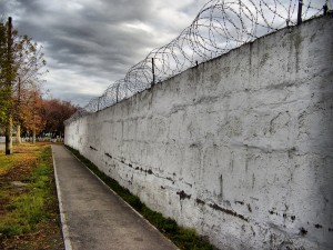 Wall_and_trees